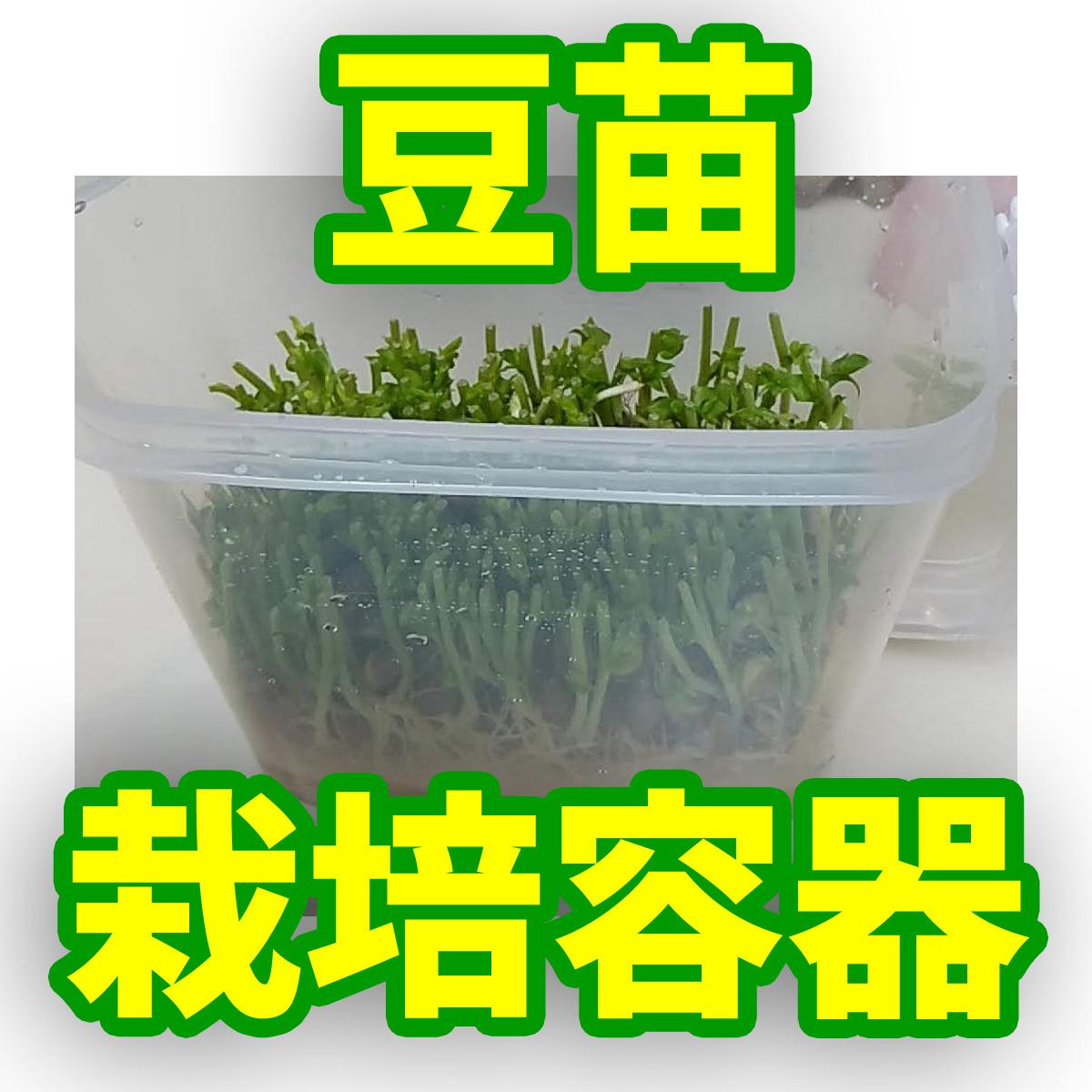 豆苗栽培容器